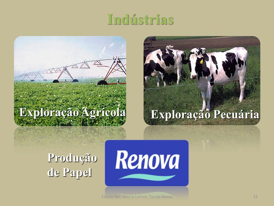 Indústrias Exploração Agrícola Exploração Pecuária Produção de Papel 12Escola Sec. Maria Lamas, Torres Novas