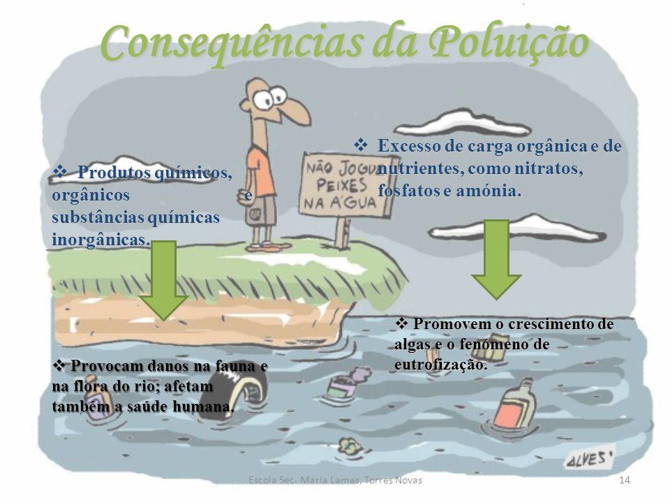 Consequências da Poluição 14Escola Sec. Maria Lamas, Torres Novas Produtos químicos, orgânicos e substâncias químicas inorgânicas. Produtos químicos,