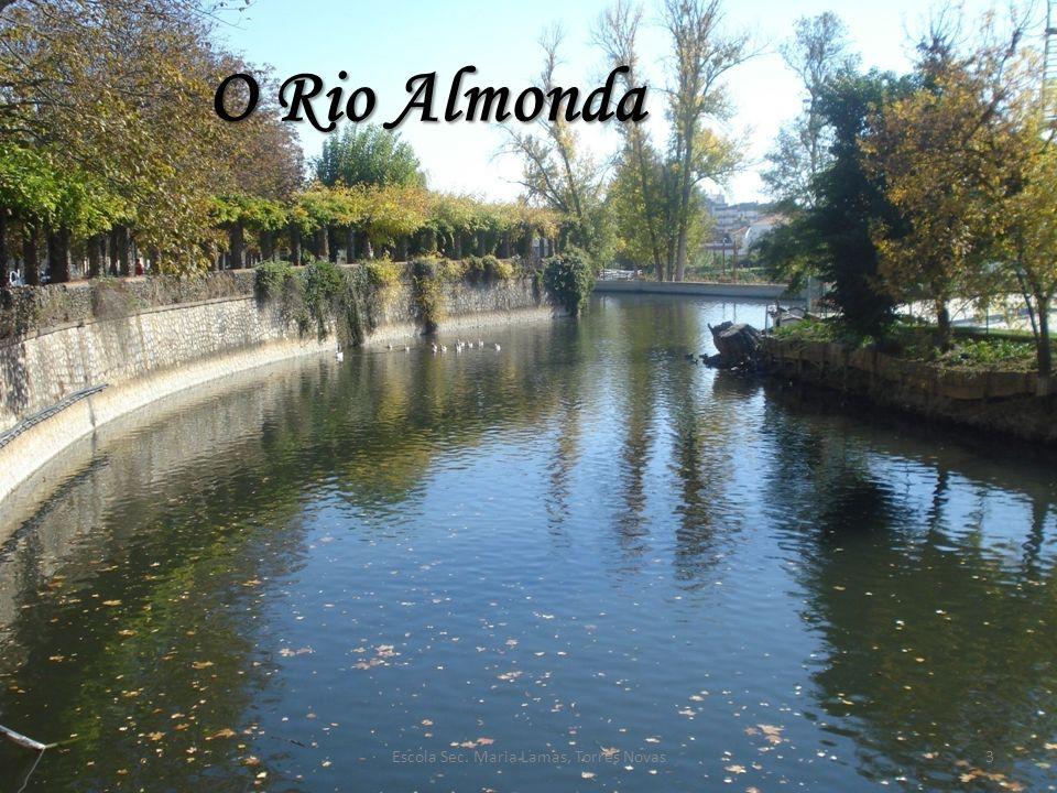 O Rio Almonda 3Escola Sec. Maria Lamas, Torres Novas