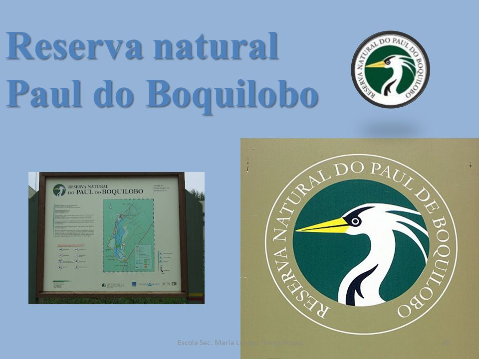 Reserva natural Paul do Boquilobo 42Escola Sec. Maria Lamas, Torres Novas