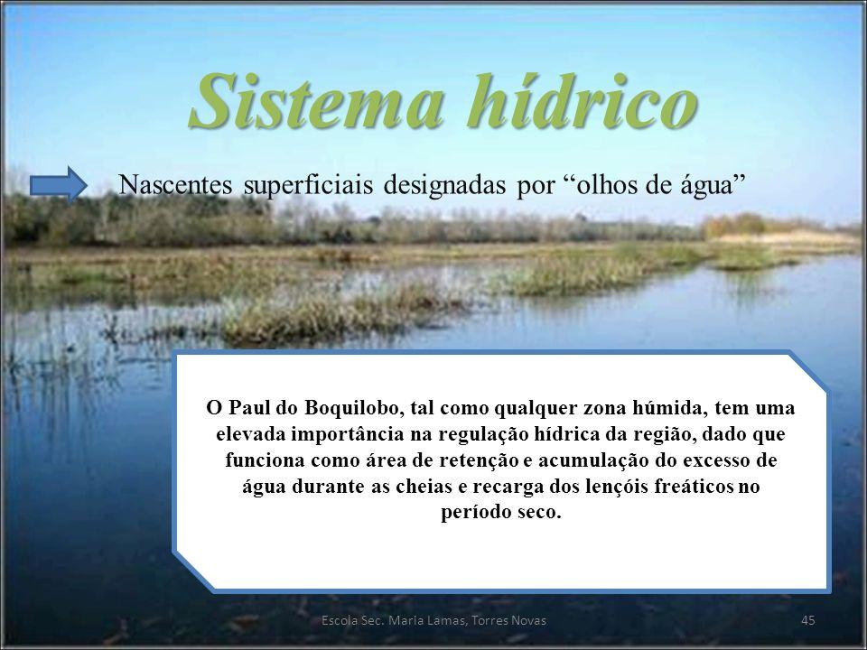 Sistema hídrico Nascentes superficiais designadas por olhos de água O Paul do Boquilobo, tal como qualquer zona húmida, tem uma elevada importância na