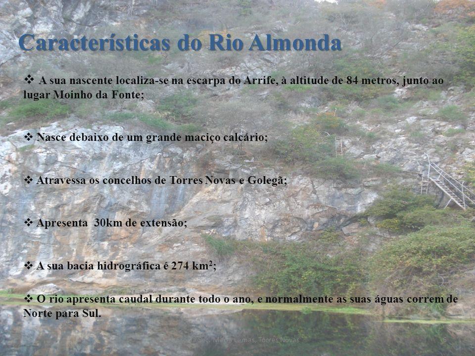Características do Rio Almonda A sua nascente localiza-se na escarpa do Arrife, à altitude de 84 metros, junto ao lugar Moinho da Fonte; Nasce debaixo