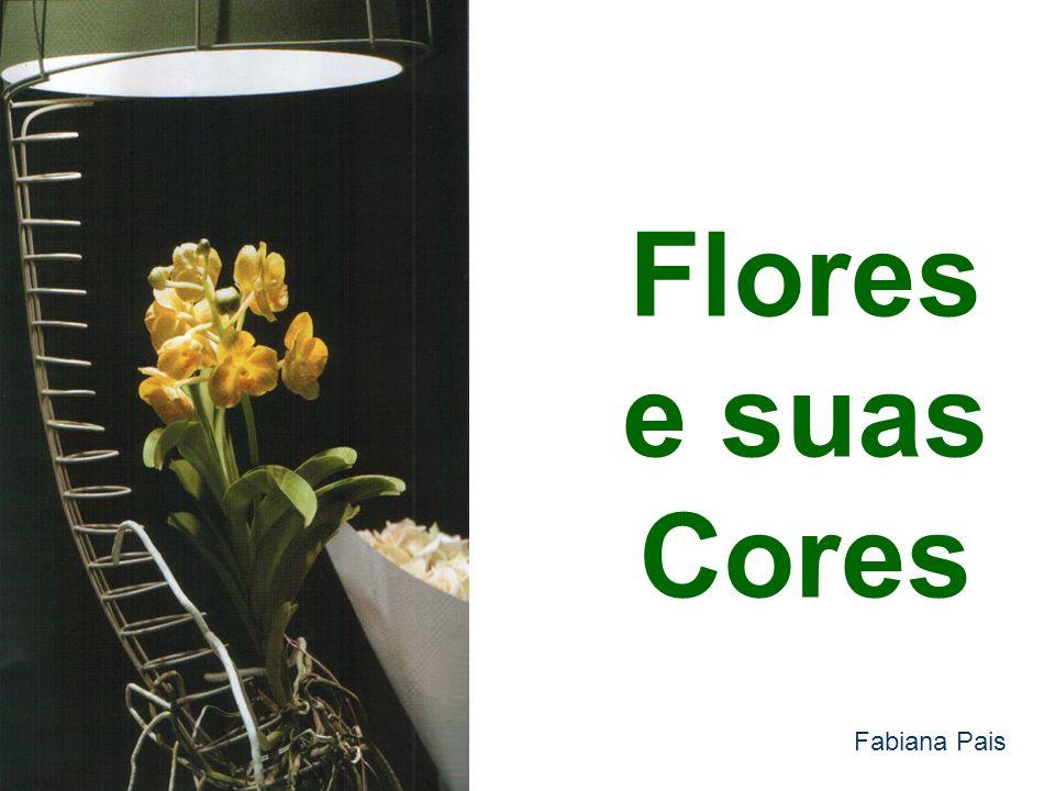 Cravos Nome Botânico: Dianthus Caryophyllus Origem:Península Ibérica e Ásia