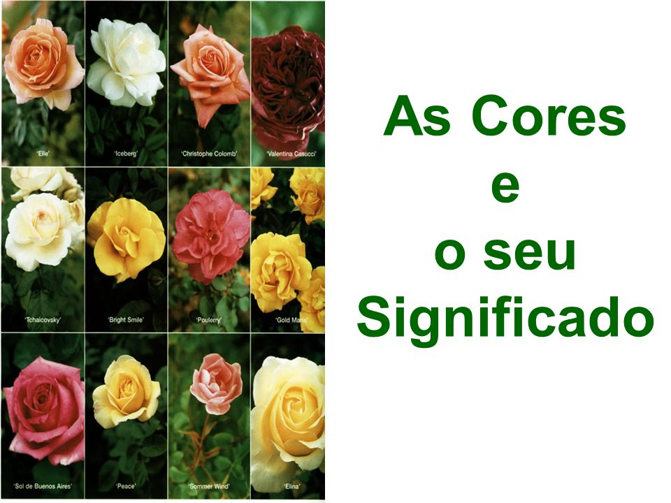 As Cores e o seu Significado