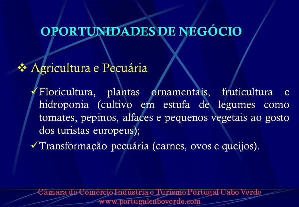 Câmara de Comércio Indústria e Turismo Portugal Cabo Verde www.portugalcaboverde.com OPORTUNIDADES DE NEGÓCIO Agricultura e Pecuária Floricultura, pla