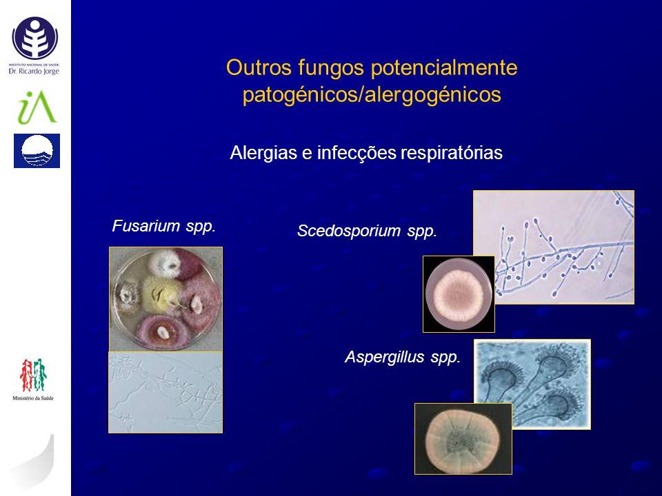 Outros fungos potencialmente patogénicos/alergogénicos Scedosporium spp. Fusarium spp. Aspergillus spp. Alergias e infecções respiratórias