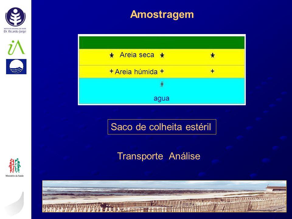 Amostragem Saco de colheita estéril Transporte Análise agua Areia húmida Areia seca