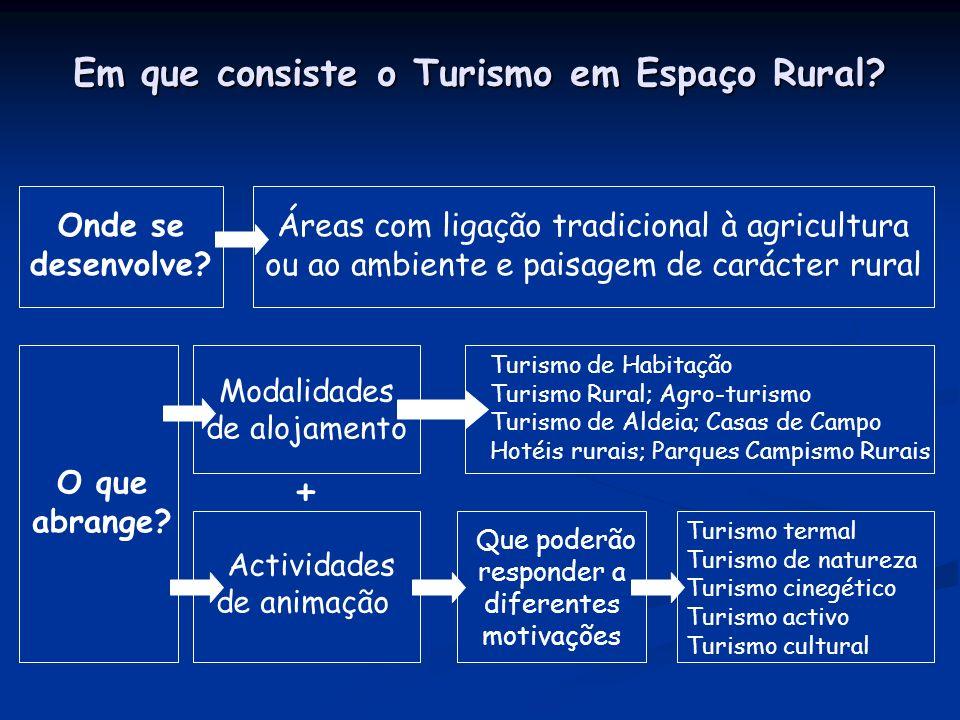 Em que consiste o Turismo em Espaço Rural. Onde se desenvolve.