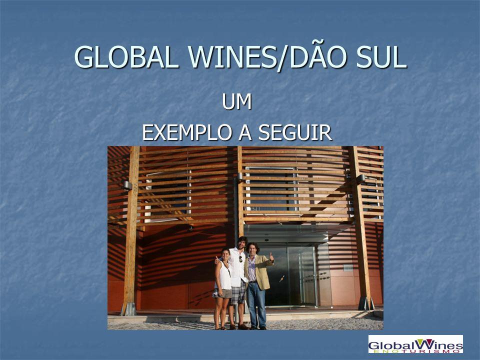 GLOBAL WINES/DÃO SUL UM EXEMPLO A SEGUIR