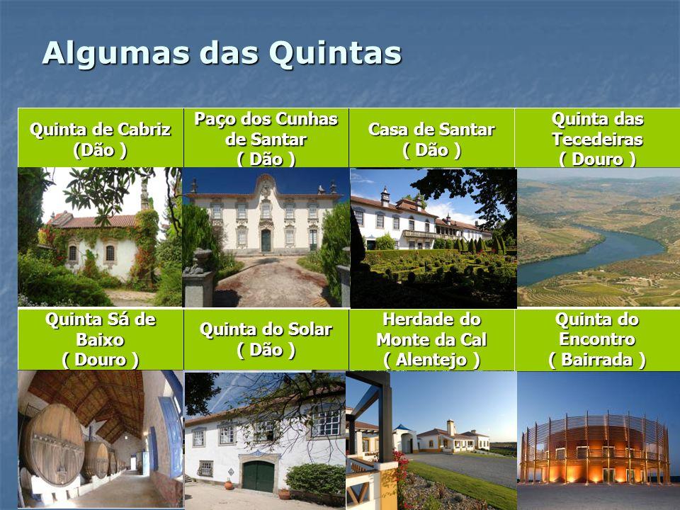 Algumas das Quintas Quinta do Encontro ( Bairrada ) Herdade do Monte da Cal ( Alentejo ) Quinta do Solar ( Dão ) Quinta S á de Baixo ( Douro ) Quinta