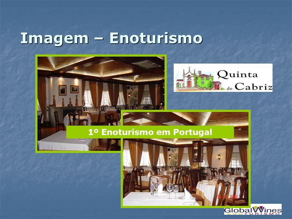 1º Enoturismo em Portugal Imagem – Enoturismo