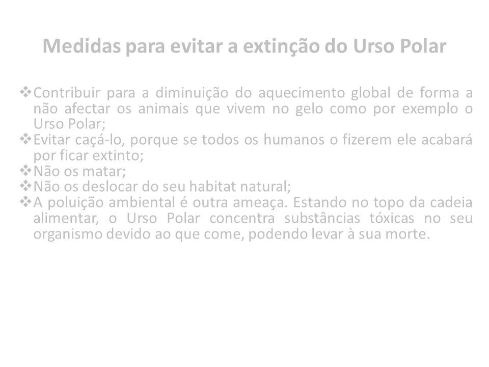 Contribuir para a diminuição do aquecimento global de forma a não afectar os animais que vivem no gelo como por exemplo o Urso Polar; Evitar caçá-lo,