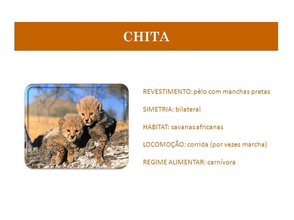 REVESTIMENTO: pêlo com manchas pretas SIMETRIA: bilateral HABITAT: savanas africanas LOCOMOÇÃO: corrida (por vezes marcha) REGIME ALIMENTAR: carnívora