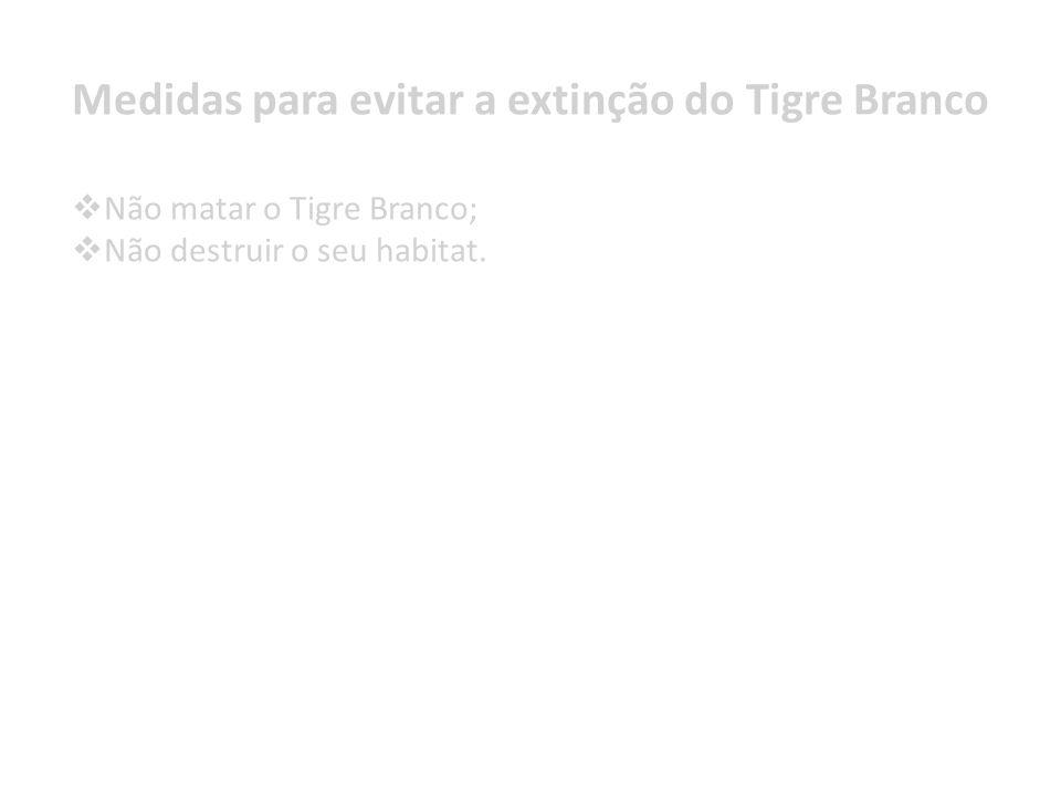 Não matar o Tigre Branco; Não destruir o seu habitat. Medidas para evitar a extinção do Tigre Branco