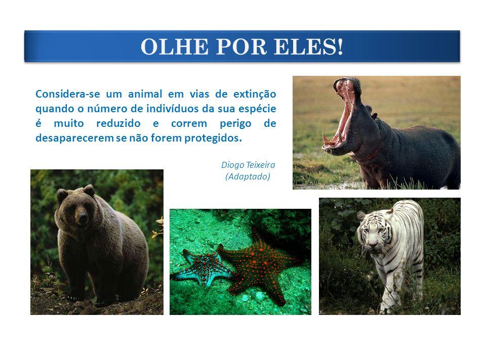 OLHE POR ELES! Considera-se um animal em vias de extinção quando o número de indivíduos da sua espécie é muito reduzido e correm perigo de desaparecer