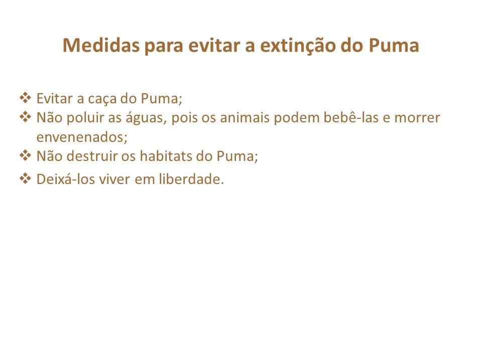 Evitar a caça do Puma; Não poluir as águas, pois os animais podem bebê-las e morrer envenenados; Não destruir os habitats do Puma; Deixá-los viver em