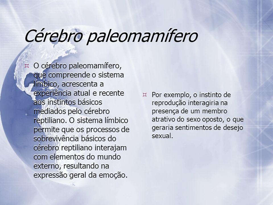 Cérebro paleomamífero O cérebro paleomamífero, que compreende o sistema límbico, acrescenta a experiência atual e recente aos instintos básicos mediad