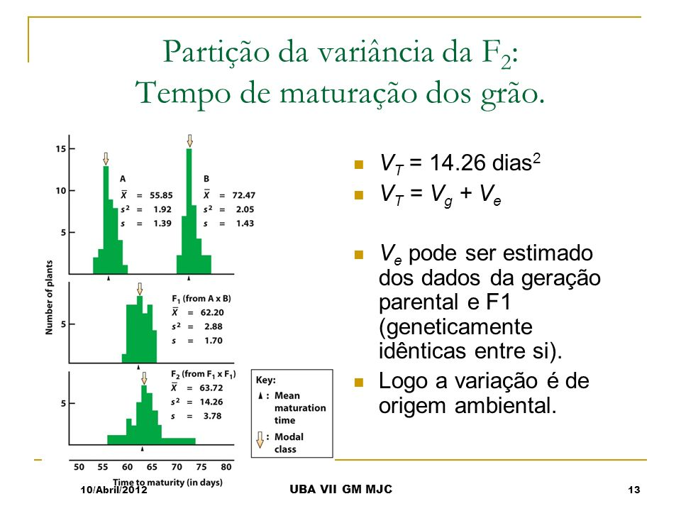 Partição da variância da F 2 : Tempo de maturação dos grão. V T = 14.26 dias 2 V T = V g + V e V e pode ser estimado dos dados da geração parental e F