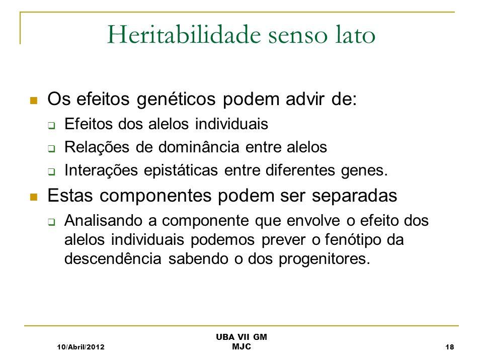 Heritabilidade senso lato Os efeitos genéticos podem advir de: Efeitos dos alelos individuais Relações de dominância entre alelos Interações epistáticas entre diferentes genes.