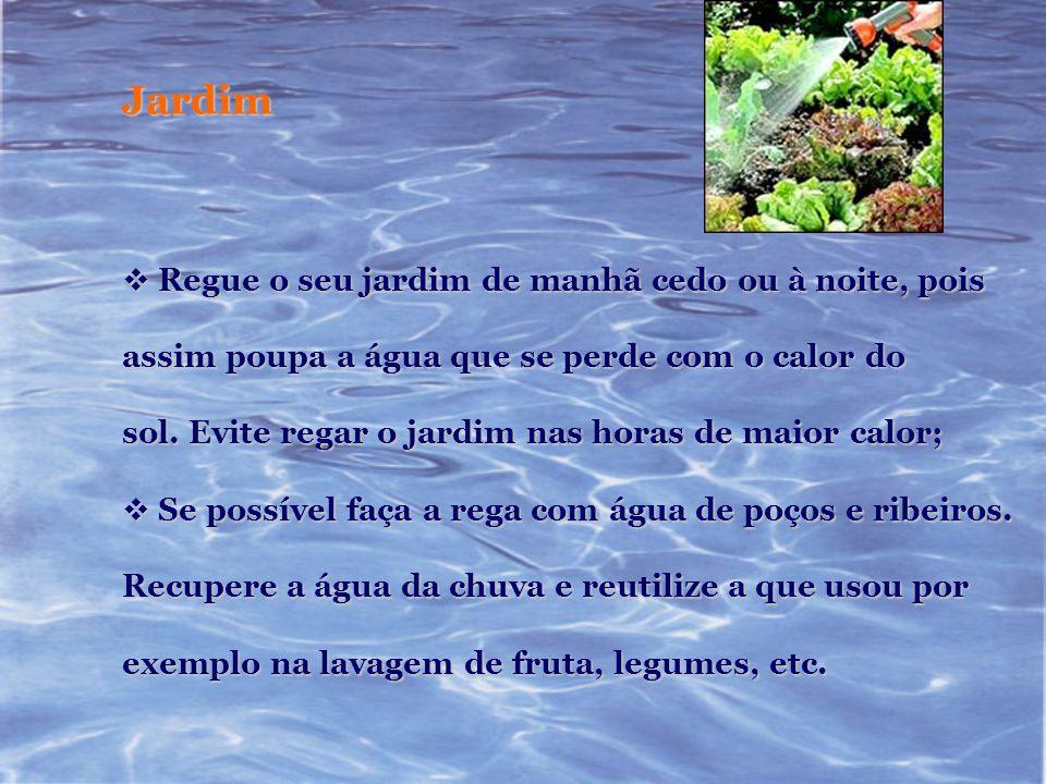 Jardim Regue o seu jardim de manhã cedo ou à noite, pois Regue o seu jardim de manhã cedo ou à noite, pois assim poupa a água que se perde com o calor