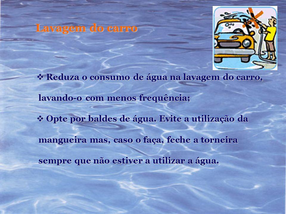 Lavagem do carro Reduza o consumo de água na lavagem do carro, Reduza o consumo de água na lavagem do carro, lavando-o com menos frequência; lavando-o
