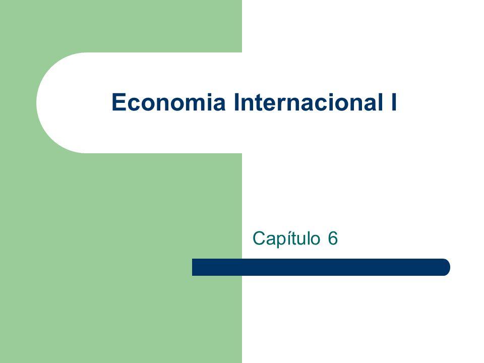Economia Internacional I Capítulo 6