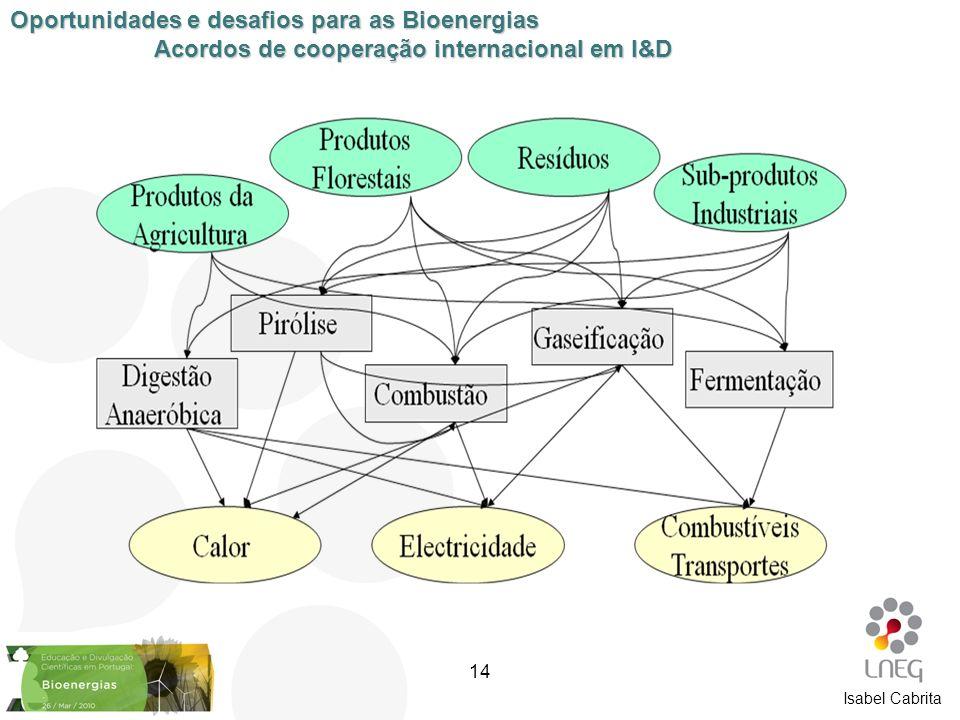 Isabel Cabrita Oportunidades e desafios para as Bioenergias Acordos de cooperação internacional em I&D 14
