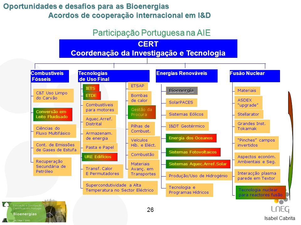 Isabel Cabrita Participação Portuguesa na AIE Combustíveis Fósseis Tecnologias de Uso Final Energias Renováveis Fusão Nuclear CERT Coordenação da Inve