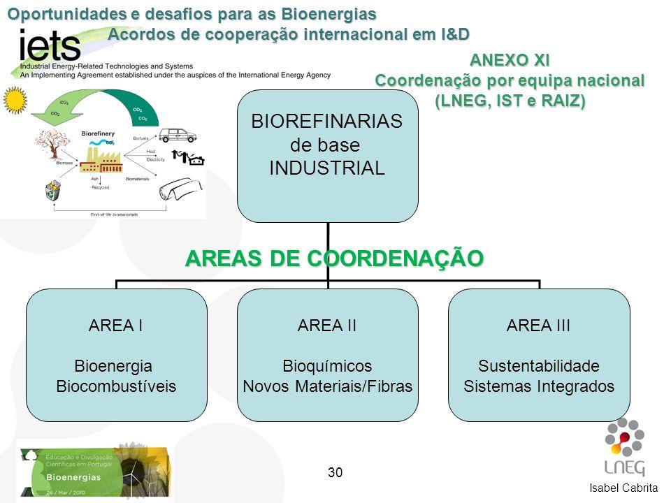 ANEXO XI Coordenação por equipa nacional (LNEG, IST e RAIZ) BIOREFINARIAS de base INDUSTRIAL AREA I Bioenergia Biocombustíveis AREA II Bioquímicos Nov