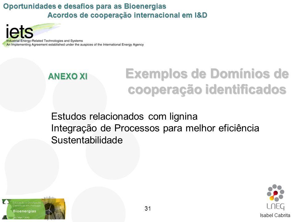 Estudos relacionados com lignina Integração de Processos para melhor eficiência Sustentabilidade Exemplos de Domínios de cooperação identificados ANEX