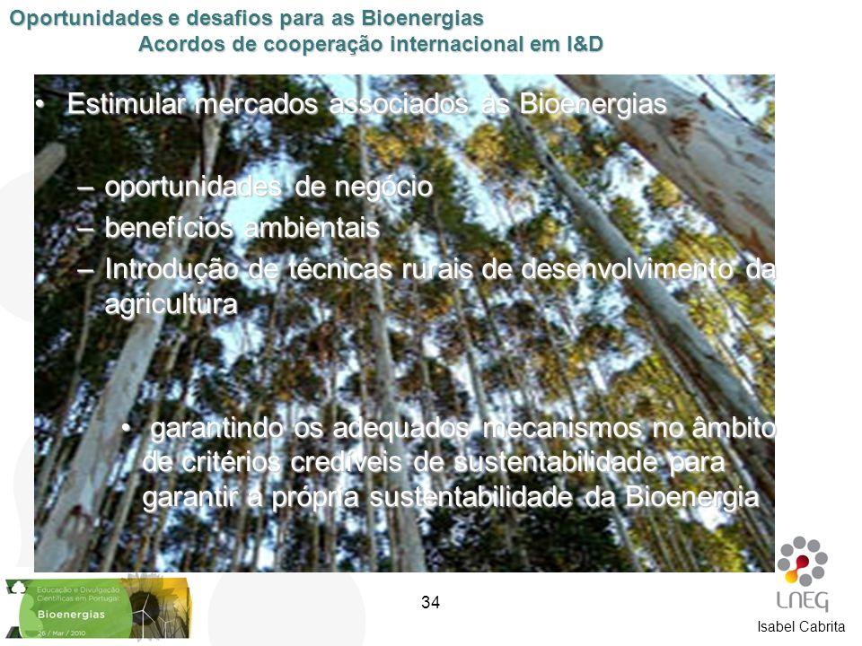 Isabel Cabrita Estimular mercados associados às BioenergiasEstimular mercados associados às Bioenergias –oportunidades de negócio –benefícios ambienta