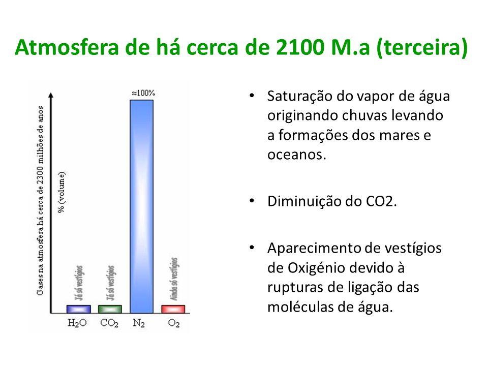 Atmosfera terrestre actual Aumento da concentração de Oxigénio.