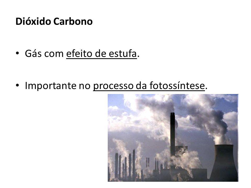 Efeito de Estufa O dióxido de carbono, o metano, os CFCs entre outros são gases com efeito de estufa.