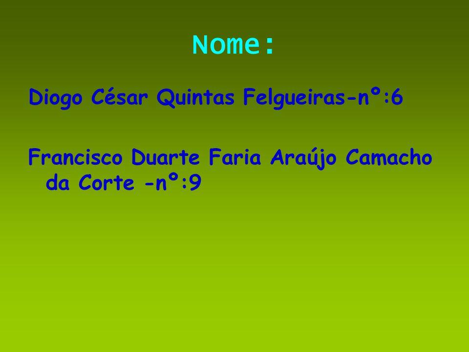 Nome: Diogo César Quintas Felgueiras-nº:6 Francisco Duarte Faria Araújo Camacho da Corte -nº:9
