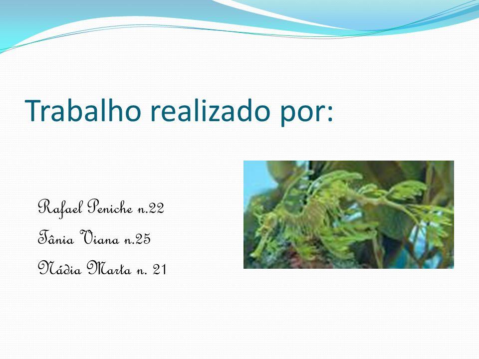 Trabalho realizado por: Rafael Peniche n.22 Tânia Viana n.25 Nádia Marta n. 21