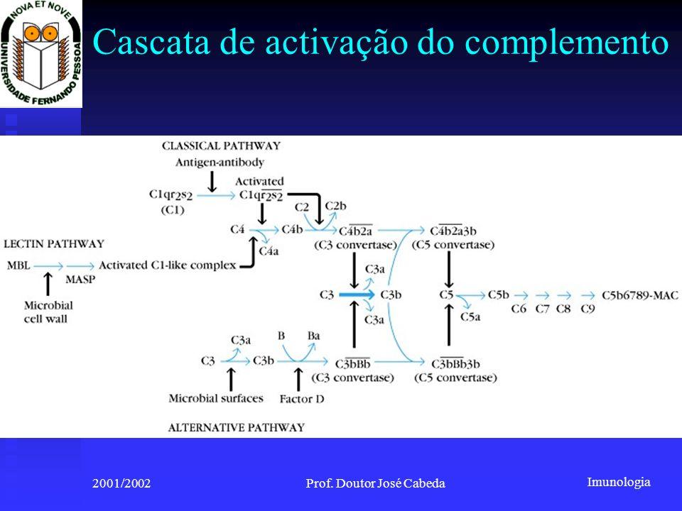 Imunologia 2001/2002Prof. Doutor José Cabeda Cascata de activação do complemento