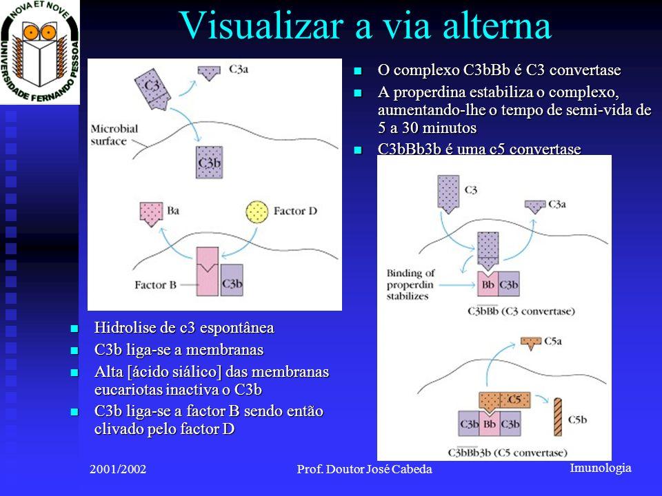 Imunologia 2001/2002Prof. Doutor José Cabeda Visualizar a via alterna Hidrolise de c3 espontânea Hidrolise de c3 espontânea C3b liga-se a membranas C3
