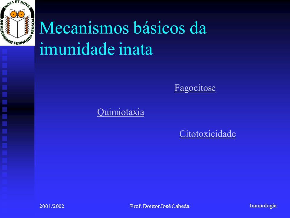 Imunologia 2001/2002Prof. Doutor José Cabeda Fagocitose Quimiotaxia Citotoxicidade Mecanismos básicos da imunidade inata