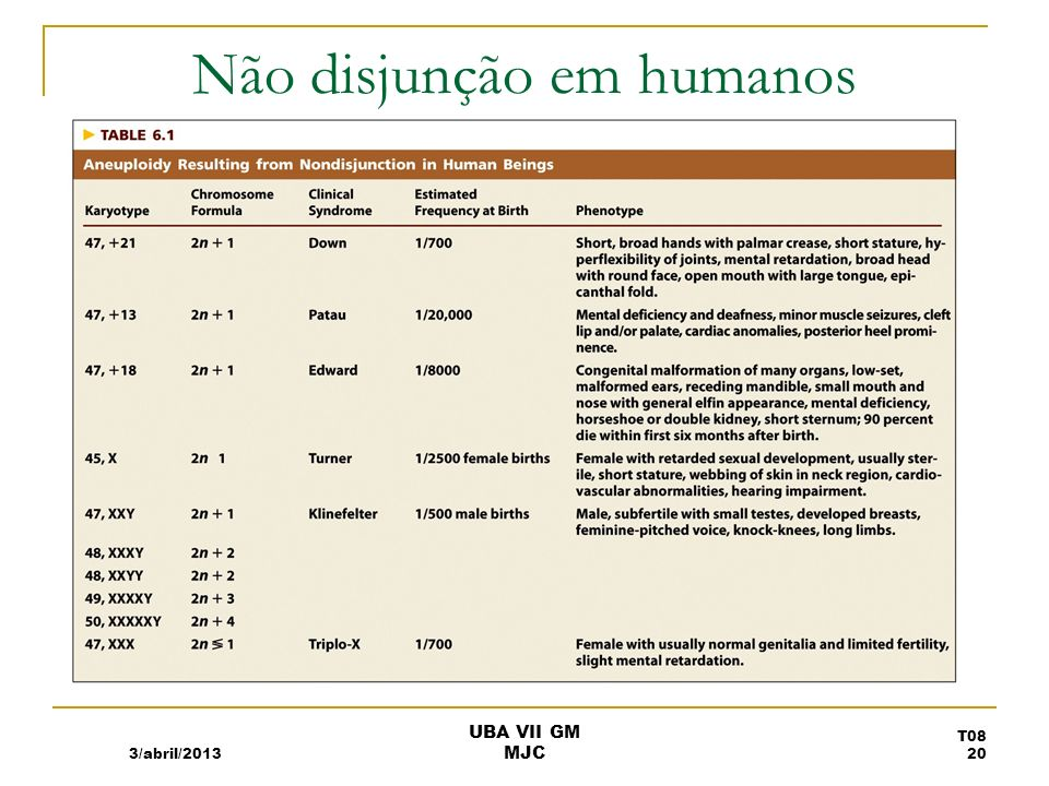 Não disjunção em humanos 3/abril/2013 T08 20 UBA VII GM MJC