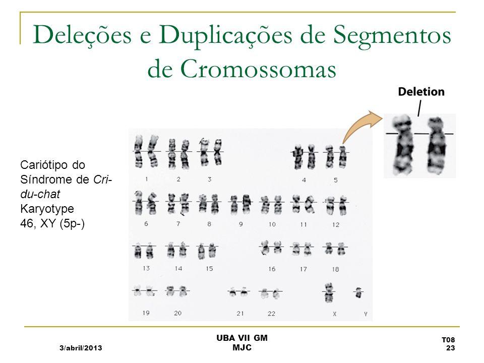 Deleções e Duplicações de Segmentos de Cromossomas 3/abril/2013 Cariótipo do Síndrome de Cri- du-chat Karyotype 46, XY (5p-) T08 23 UBA VII GM MJC