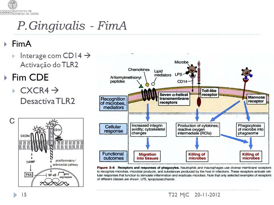 P.Gingivalis - FimA FimA Interage com CD14 Activação do TLR2 Fim CDE CXCR4 Desactiva TLR2 20-11-2012T22 MJC15