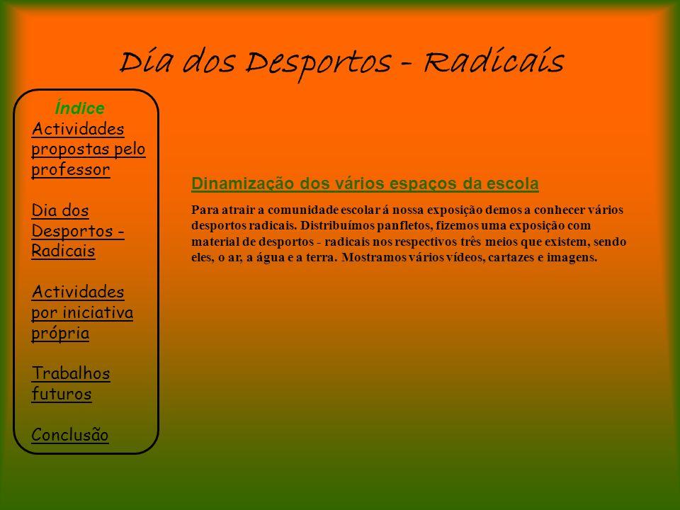 Dia dos Desportos - Radicais Índice Actividades propostas pelo professor Dia dos Desportos - Radicais Actividades por iniciativa própria Trabalhos fut