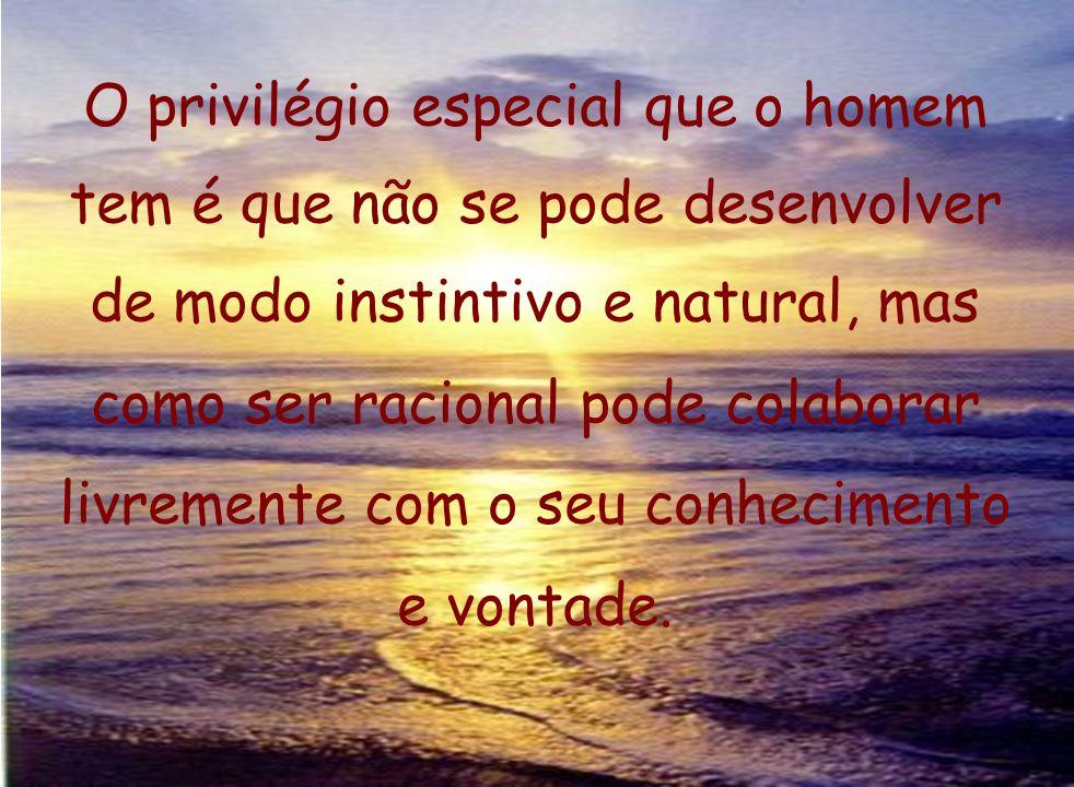 O privilégio especial que o homem tem é que não se pode desenvolver de modo instintivo e natural, mas como ser racional pode colaborar livremente com