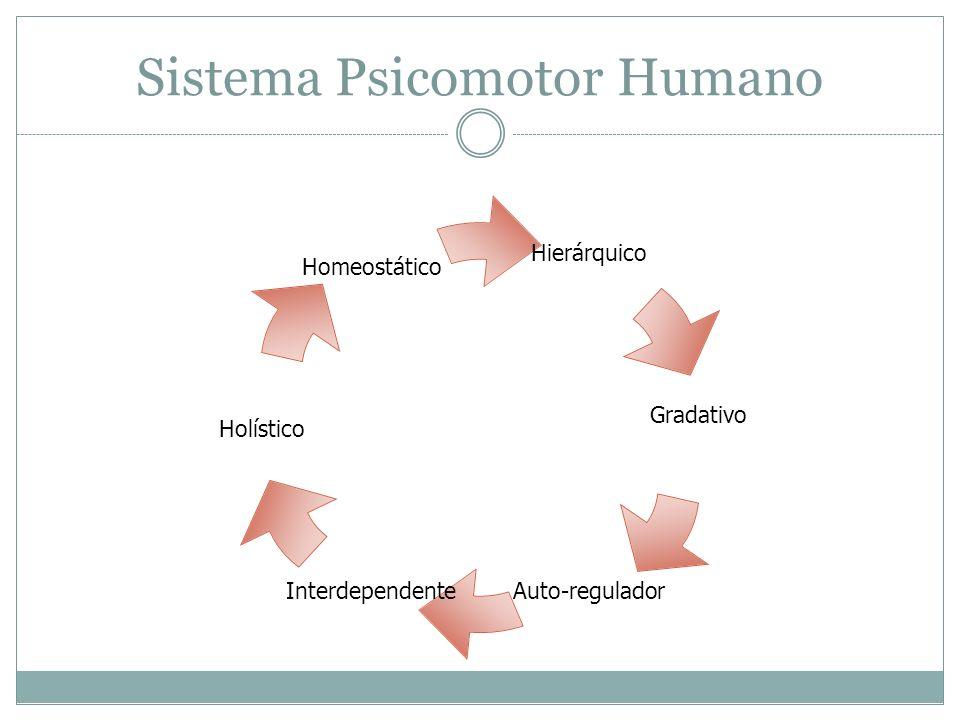 Sistema Psicomotor Humano Hierárquico Gradativo Auto-reguladorInterdependente Holístico Homeostático