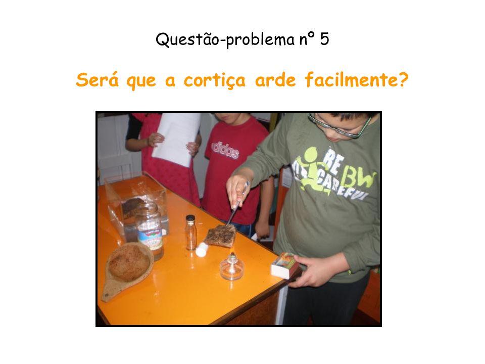 Questão-problema nº 5 Será que a cortiça arde facilmente?
