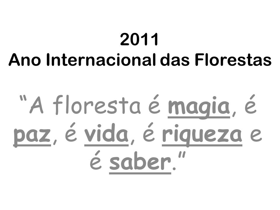 2011 Ano Internacional das Florestas A floresta é magia, é paz, é vida, é riqueza e é saber.