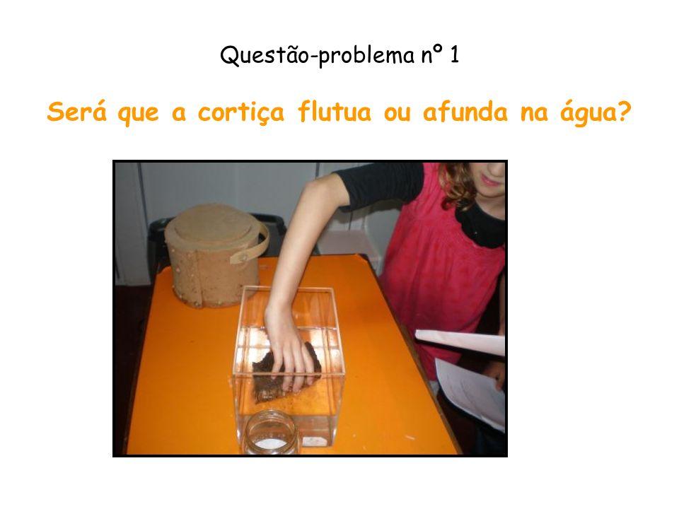 Questão-problema nº 1 Será que a cortiça flutua ou afunda na água?