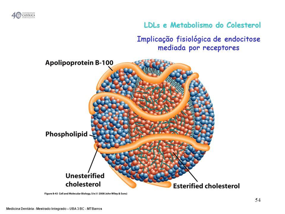 DEPARTAMENTO DE CIÊNCIAS DA SAÚDE Medicina Dentária - Mestrado Integrado – UBA 3 BC - MTBarros 54 LDL s e Metabolismo do Colesterol Implicação fisioló