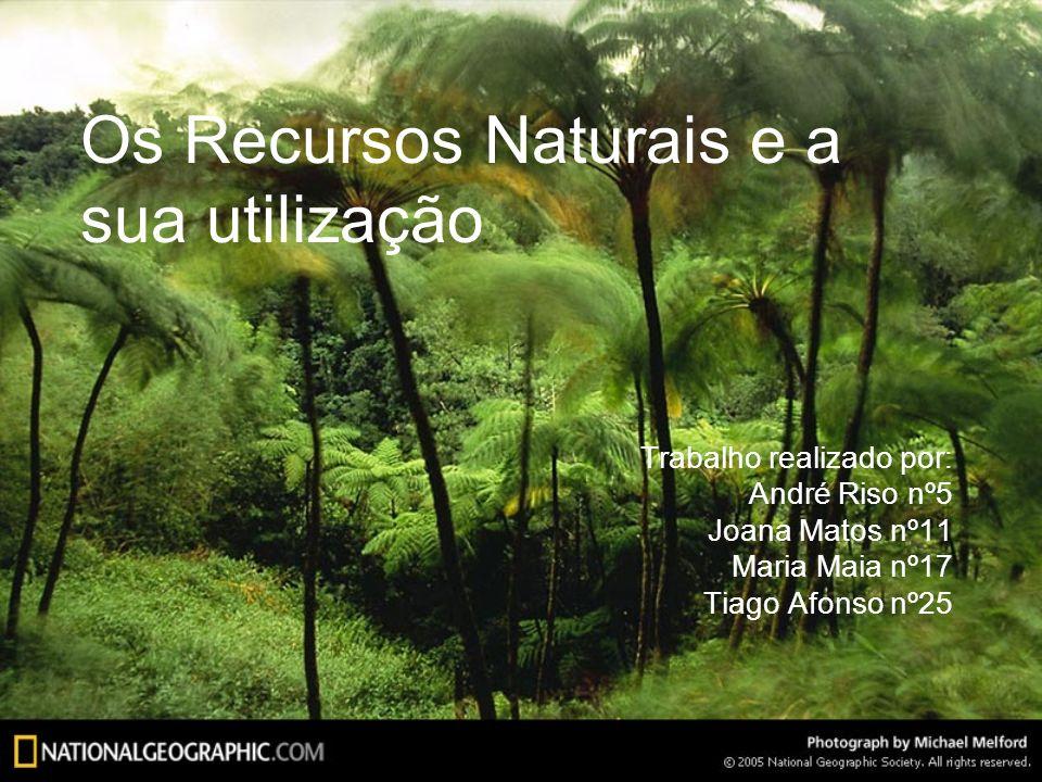 Conclusões Sem os recursos naturais não seria possível ao Homem sobreviver; Muitos são o ponto de partida para a existência da nossa sociedade; Existem alternativas aos recursos naturais, mas são bastante dispendiosas, e nem todas as pessoas e países estão dispostos a isso.