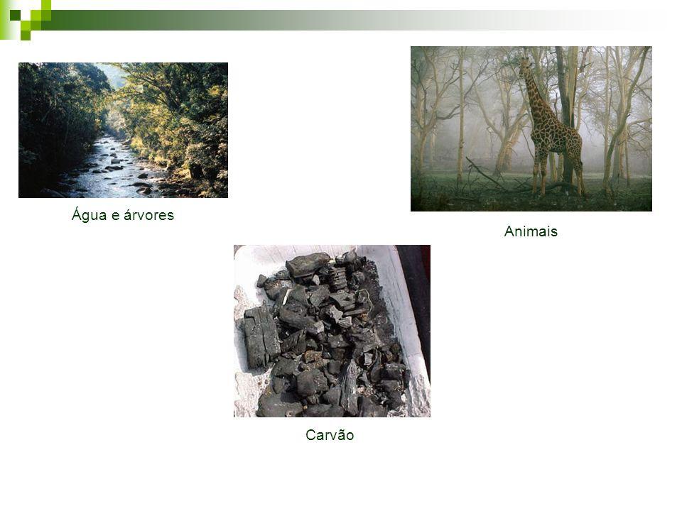 Recursos de que o solo se acha dotado naturalmente, sem custo de produção, mas constituindo bens económicos, compreendendo florestas e pastos naturais, águas e materiais de lavra, como argilas, areias e rochas.
